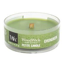 WoodWick petite Evergreen