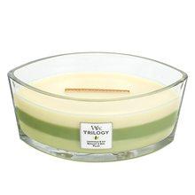 WoodWick Svíčka Trilogy WoodWick Zelená oáza, 453.6 g