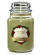 Yankee candle Bayberry Returning 623g borovice a evergreen
