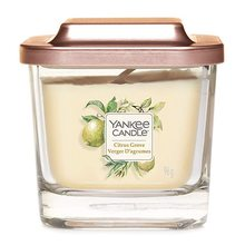 Yankee candle Elevation sklo malé 1 knot Citrus Grove