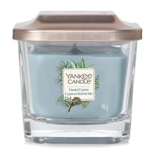 Yankee candle Elevation sklo malé 1 knot Coastal Cypress