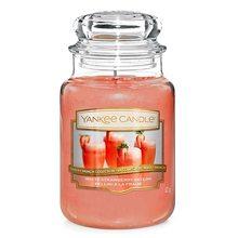 Yankee candle Svíčka ve skleněné dóze Yankee Candle Jahodové Bellini, 623 g