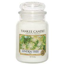 Yankee candle Svíčka ve skleněné dóze Yankee Candle Lipový strom, 623 g