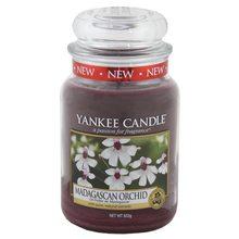 Yankee candle Svíčka ve skleněné dóze Yankee Candle Orchidej z Madagaskaru, 623 g