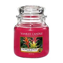 Yankee candle Svíčka ve skleněné dóze Yankee Candle Tropická džungle, 410 g