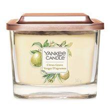 Yankee candle Svíčka ve skleněné váze Yankee Candle Citrusový háj, 347 g