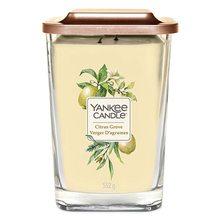Yankee candle Svíčka ve skleněné váze Yankee Candle Citrusový háj, 552 g