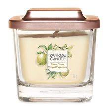 Yankee candle Svíčka ve skleněné váze Yankee Candle Citrusový háj, 96 g
