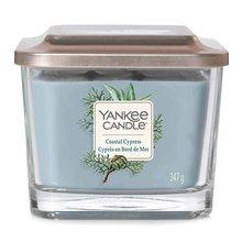Yankee candle Svíčka ve skleněné váze Yankee Candle Pobřežní cypřiš, 347 g
