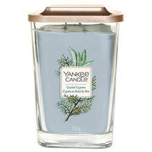 Yankee candle Svíčka ve skleněné váze Yankee Candle Pobřežní cypřiš, 552 g