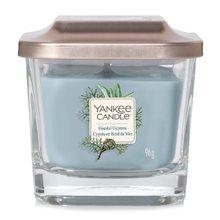 Yankee candle Svíčka ve skleněné váze Yankee Candle Pobřežní cypřiš, 96 g